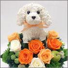 犬の花ギフトプリザーブドフラワーアレンジ