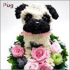パグ犬のトピアリー