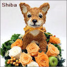 柴犬のプリザーブドフラワーアレンジ 柴犬グッズ