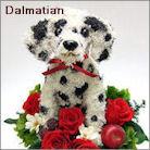 ダルメシアン犬のプリザーブドフラワーアレンジ ダルメシアングッズ