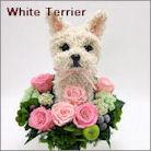 ホワイトテリア犬のプリザーブドフラワーアレンジ ウェスティグッズ