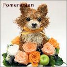 ポメラニアン犬のプリザーブドフラワーアレンジ ポメラニアングッズ