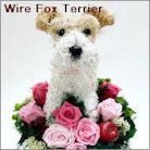 ワイヤーフォックステリア犬のプリザーブドフラワーアレンジ ワイヤーフォックスグッズ