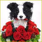ボーダーコリー犬のトピアリー