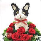 白黒猫のトピアリー 白黒猫グッズ
