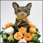 キジトラ猫のトピアリー キジトラ猫グッズ