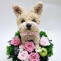 犬猫トピアリーフラワーギフトのアトリエ花倶楽部の作品の品質について
