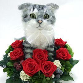 スコティッシュフォールド猫のドールトピアリー