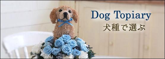 犬の形 トピアリー プリザーブドフラワー