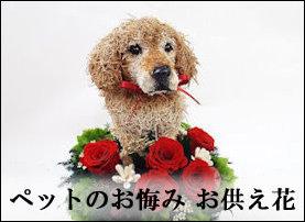 ペットお悔み,お供え花,一周忌の花