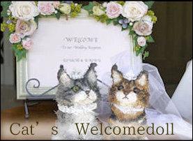 ウェルカムドール 猫