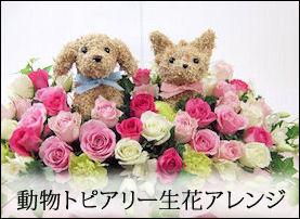犬猫 動物の形 トピアリー生花フラワー アニマルフラワー