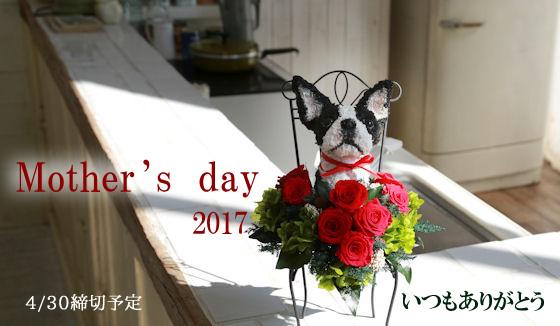 犬好き猫好きのお母さんのための母の日ギフト、プリザーブドフラワー