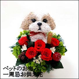 犬の一周忌お供え花,ペットのお悔やみ