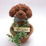 犬、ペットの犬種別水苔 トピアリー