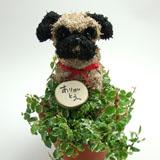 パグ犬の水苔動物 トピアリーベビーサイズ