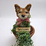 柴犬の水苔動物 トピアリー ベビーサイズ