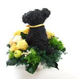花ギフト 犬