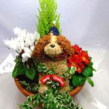 クリスマストピアリー部分染め寄せ植え(8号鉢)