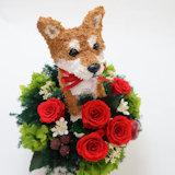 柴犬 オリジナルグッズ