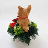 柴犬好き プレゼント