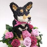黒柴犬 プリザーブドフラワー