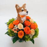 犬のプリザーブドフラワーアレンジ。