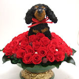 還暦祝いの赤いバラ60輪とペットのトピアリーオーダーメイド