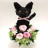 黒猫の プリザーブドフラワーアレンジPretty
