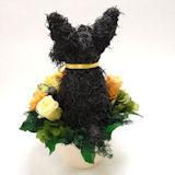 犬の形 花