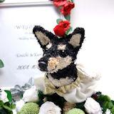 柴犬のウェルカムドッグ(ウェルカムボード付き)ドレス付き