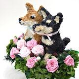 柴犬のウェルカムドッグプリザーブドフラワー