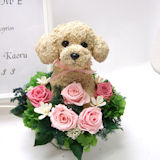 プードルとピンクの花のウェルカムボード