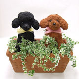 2匹の犬猫種別トピアリー シンプルな寄せ植え