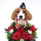ビーグル犬の プリザーブドフラワー