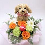 母の日限定 犬のトピアリー 生花アレンジthanksmama