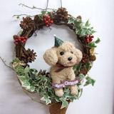 クリスマスリース トイプードルのトピアリーアイビーリース