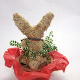 クリスマスうさぎ水苔動物トピアリー