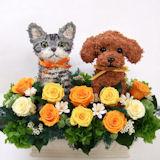 犬と猫のトピアリープリザーブドフラワーアレンジ