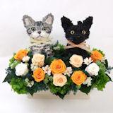 ウェルカムキャット プリザーブドフラワー アメリカンショートヘアと黒猫