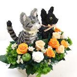 ウェルカムドール猫