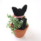 黒猫の水苔トピアリー