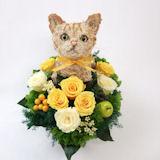 マンチカン猫のトピアリー プリザーブドフラワーCute