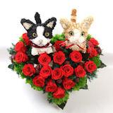 猫のウェルカムドール