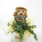 犬の水苔動物トピアリー