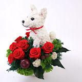 白柴犬 プリザーブドフラワー