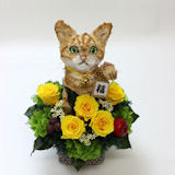 我が家の招き猫 茶トラ猫P