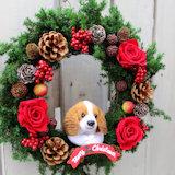 犬ぬいぐるみクリスマスリース