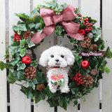 マルチーズ 犬クリスマスリース