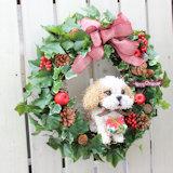 クリスマスリース 犬